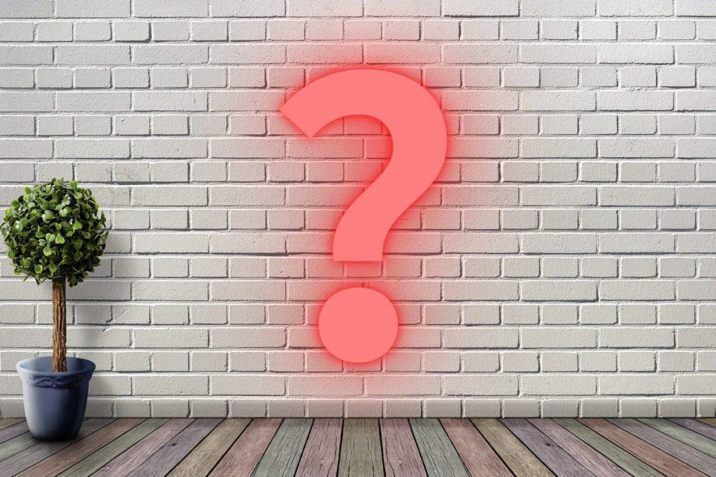 植木鉢があるだけのシンプルな部屋の壁に、「?」マークが表示されている。