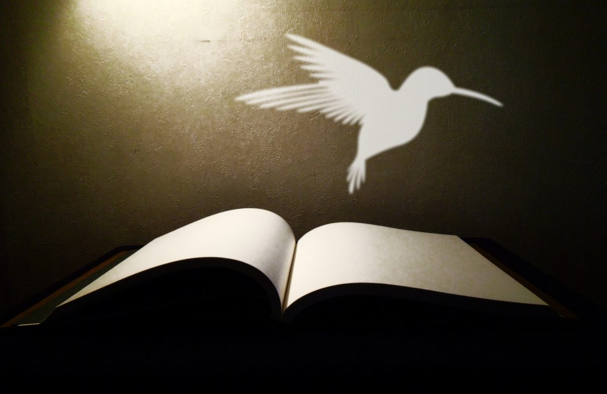 開かれた本の上に鳥のイラストが浮かんでいる