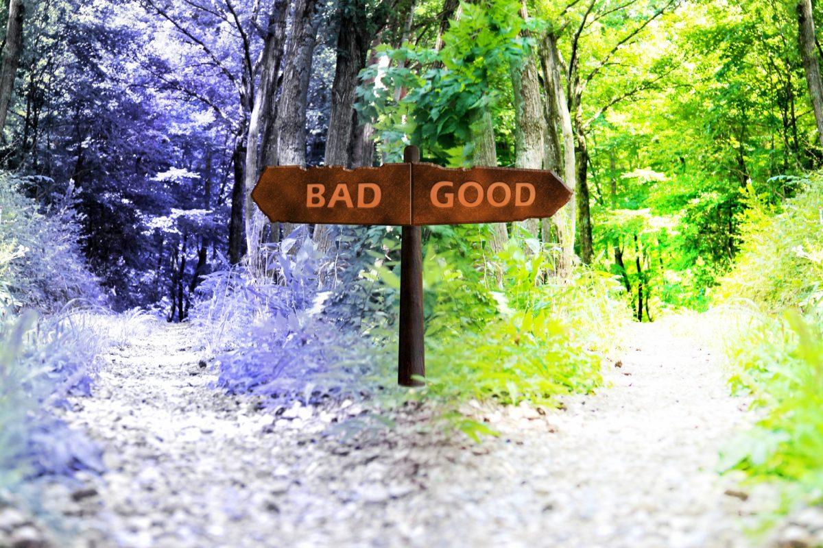分かれ道にBADとGOODと書かれた看板が立っている